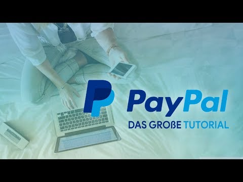 PayPal launches a cashback credit card - Tamebay