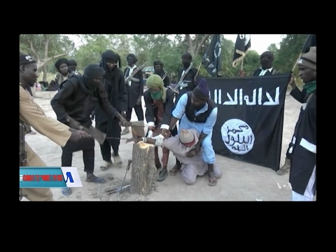 What You Should Know About Boko Haram - Providence